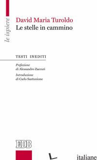 STELLE IN CAMMINO (LE) - TUROLDO DAVID MARIA