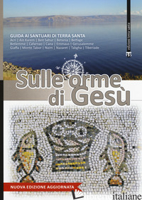 SULLE ORME DI GESU'. GUIDA AI SANTUARI DI TERRA SANTA - AA.VV.