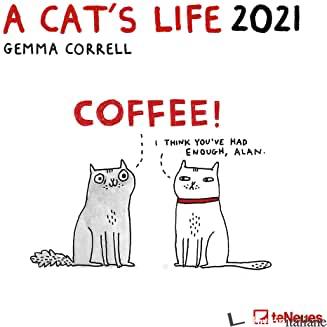 A CAT'S LIFE -