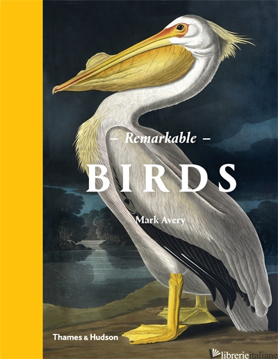 REMARKABLE BIRDS - MARK AVERY