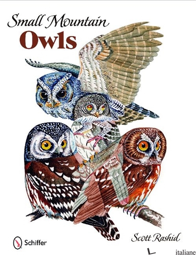 Small Mountain Owls -