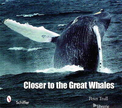 Closer to the Great Whales -