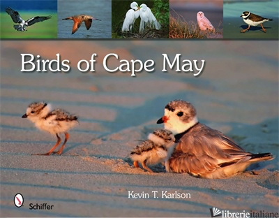 Birds of Cape May, New Jersey - Kevin Karlson