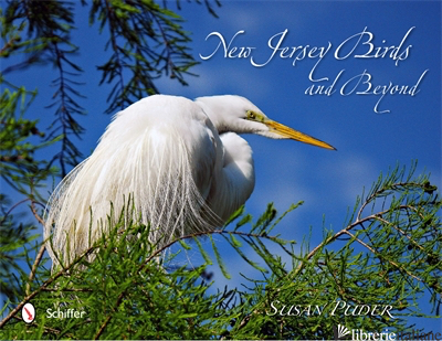 NEW JERSEY BIRDS AND BEYOND - PUDER
