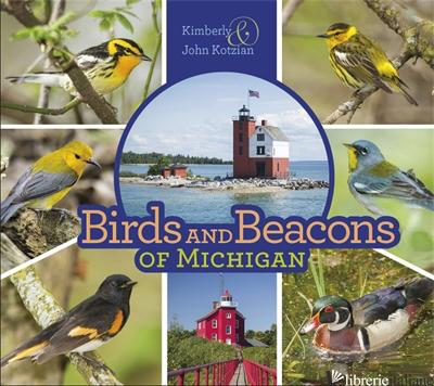 Birds and Beacons of Michigan -