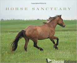 HORSE SANCTUARY - ALLISON MILIONIS, WITH PHOTOGRAPHY BY KAREN TWEEDY-HOLMES AND A FOREWORD BY TEMP
