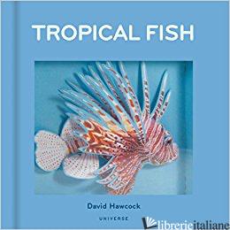 Tropical Fish p;romotional - David Hawcock