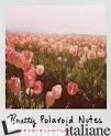 PRETTY POLAROIDS NOTECARDS -