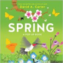 SPRING - DAVID CARTER