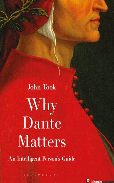 Why Dante Matters: An Intelligent Persons Guide - John Took