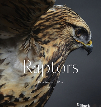 RAPTORS - TRAER SCOTT
