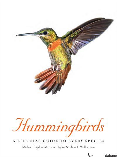HUMMINGBIRDS - FOGDEN
