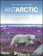 Antarctic Pb -