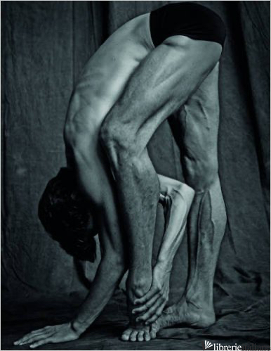 Les Danseurs - Matthew Brookes