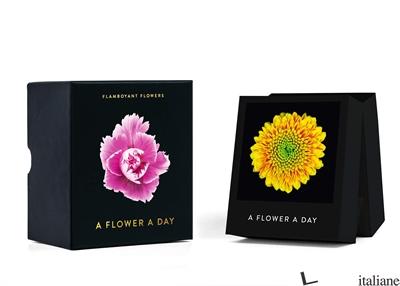 Flamboyant Flowers (Perpetual) - Aa.Vv