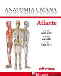 ANATOMIA UMANA. ATLANTE - ANASTASI G. (CUR.); GAUDIO E. (CUR.); TACCHETTI C. (CUR.)