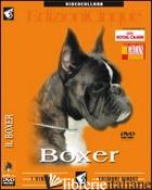 BOXER. DVD -