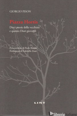 PIAZZA HORTIS - PISON GIORGIO