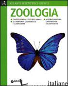 ZOOLOGIA. EDIZ. ILLUSTRATA - RIGUTTI ADRIANA