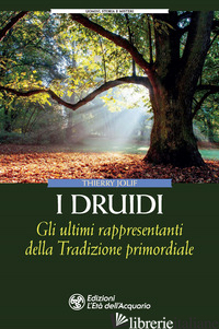 DRUIDI. GLI ULTIMI RAPPRESENTANTI DELLA TRADIZIONE PRIMORDIALE (I) - JOLIF THIERRY