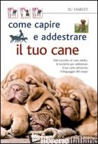 COME CAPIRE E ADDESTRARE IL TUO CANE - HARVEY SU