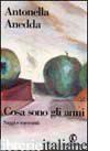 COSA SONO GLI ANNI. SAGGI E RACCONTI - ANEDDA ANTONELLA