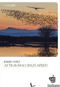 ATTRAVERSO SPAZI APERTI - LOPEZ BARRY