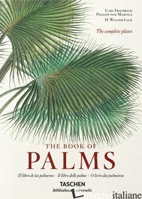 C. F. P. VON MARTIUS. THE BOOK OF PALMS. EDIZ. ITALIANA, SPAGNOLA E PORTOGHESE - LACK H. WALTER